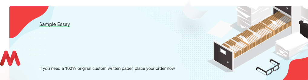 Free «Final Markets and Institutions Case Study Analysis Paper» UK Essay Paper